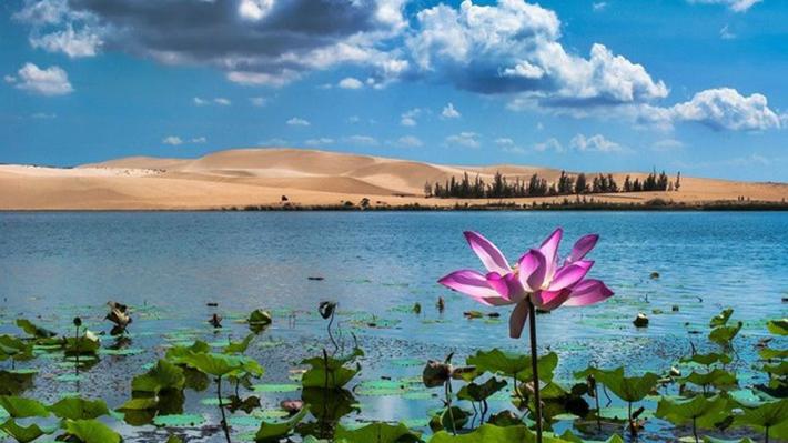 Du lịch Phan Thiết: Những địa điểm không thể bỏ qua quanh khu Mũi Né 2