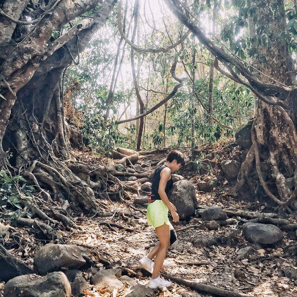 Du lịch sinh thái là gì? Vai trò của du lịch sinh thái đối với đời sống xã hội